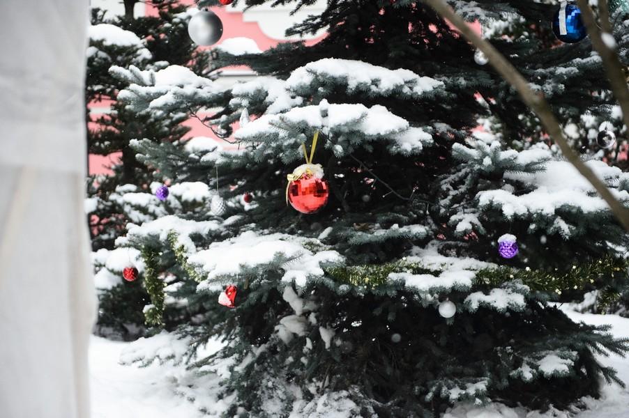 Зима в Покровском монастыре и на подворье в селе Марково